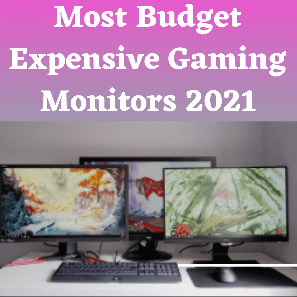 Top Most Budget Expensive Gaming Monitors 2021
